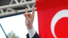 Avusturya'da 'Bozkurt' işareti artık yasak