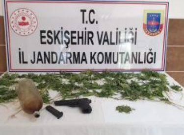 Uyuşturucu çiftçileri yakalandı