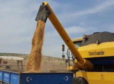 Buğday ve arpa üreticisi umduğunu bulamadı
