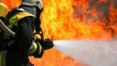 Bursa'daki yangına Eskişehir'den söndürme desteği