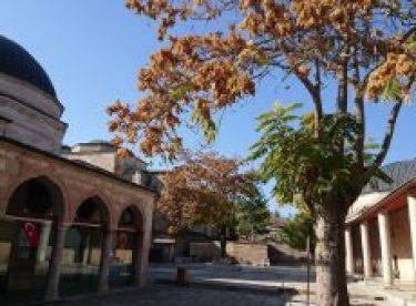 Seyyid Battal Gazi külliyesinde sonbahar güzelliği