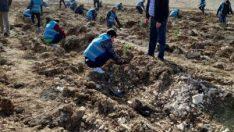 """Eskişehir Adliyesinden """"Geleceğe Nefes"""" seferberliğine destek"""