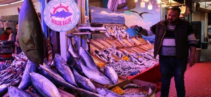 Eskişehir halkı ton balığını sevdi