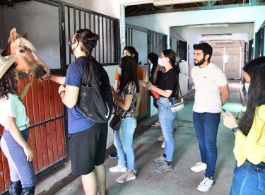 AIESEC gönüllüleri Tepebaşı'nda