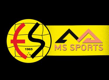 Eskişehirspor'a Alman sponsor